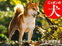 2016年カレンダー ニッポンの犬(平凡社)