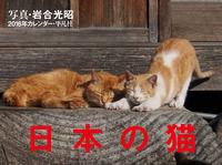2016年カレンダー 日本の猫(平凡社)