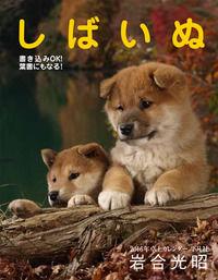 2016年卓上カレンダー しばいぬ(平凡社)
