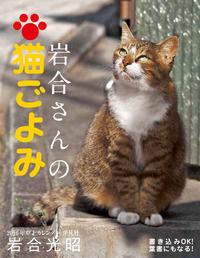 2016年卓上カレンダー 岩合さんの猫ごよみ(平凡社)