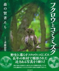 森の賢者たちフクロウとコミミズク