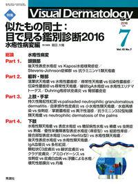 VisualD.2016年7月号Vol.15No.7 ()