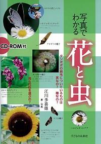 CD-ROM付 写真でわかる 花と虫
