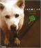 キセキの犬ユキ