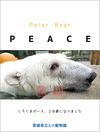 Polar Bear PEACE 20